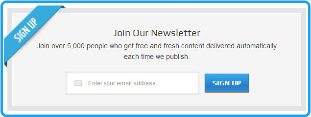 newsletter signup box preview
